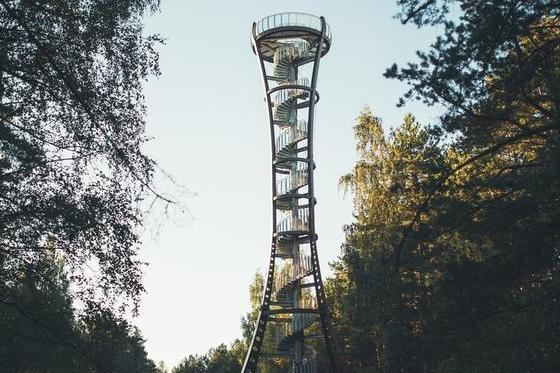 Observation Tower of Labanoras Regional Park 3